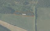Miškų ūkio paskirties žemės sklypo pardavimo aukcionas Pagėgių sav., Vilkyškių sen., Žagmantėlių k. (kadastro Nr. 8892/0002:40)
