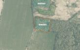 Miškų ūkio paskirties žemės sklypo pardavimo aukcionas Skuodo r. sav., Aleksandrijos sen., Jedžiotų k. (kadastro Nr. 7501/0004:142)