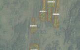 Miškų ūkio paskirties žemės sklypo pardavimo aukcionas Pakruojo r. sav., Žeimelio sen., Gatautėlių k. (kadastro Nr. 6535/0005:93)
