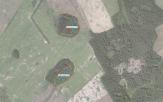 Miškų ūkio paskirties žemės sklypo pardavimo aukcionas Anykščių r. sav., Troškūnų sen., Pienagalio k. (kadastro Nr. 3410/0003:322)