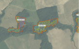 Miškų ūkio paskirties žemės sklypo pardavimo aukcionas Raseinių r. sav., Viduklės sen., Šaltropių k. (kadastro Nr. 7258/0006:78)