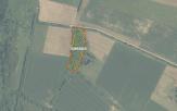Miškų ūkio paskirties žemės sklypo pardavimo aukcionas Kelmės r. sav., Šaukėnų sen., Dubėnų k. (kadastro Nr. 5410/0003:40)