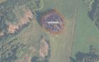 Miškų ūkio paskirties žemės sklypo pardavimo aukcionas Ukmergės r. sav., Želvos sen., Lelikonių k. (kadastro Nr. 8162/0002:136)