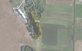 Miškų ūkio paskirties žemės sklypo pardavimo aukcionas Pakruojo r. sav., Guostagalio sen., Degėsių k. (kadastro Nr. 6503/0011:20)