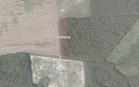 Miškų ūkio paskirties žemės sklypo pardavimo aukcionas Anykščių r. sav., Traupio sen., Vičiūnų k. (kadastro Nr. 3476/0004:414)