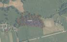 Miškų ūkio paskirties žemės sklypo pardavimo aukcionas Raseinių r. sav., Viduklės sen., Paupio k. (kadastro Nr. 7248/0002:152)