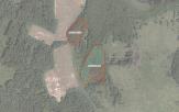 Miškų ūkio paskirties žemės sklypo pardavimo aukcionas Širvintų r. sav., Gelvonų sen., Standviliškio k. (kadastro Nr. 8903/0003:330)
