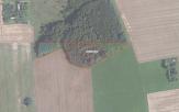 Miškų ūkio paskirties žemės sklypo pardavimo aukcionas Širvintų r. sav., Gelvonų sen., Šarkaičių k. (kadastro Nr. 8915/0001:316)