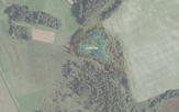 Miškų ūkio paskirties žemės sklypo pardavimo aukcionas Širvintų r. sav., Gelvonų sen., Šiliankos vs. (kadastro Nr. 8915/0001:320)