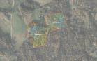 Miškų ūkio paskirties žemės sklypo pardavimo aukcionas Utenos r. sav., Tauragnų sen., Kalvių k. (kadastro Nr. 8227/0002:131)