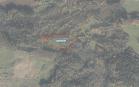 Miškų ūkio paskirties žemės sklypo pardavimo aukcionas Utenos r. sav., Tauragnų sen., Kamšos k. (kadastro Nr. 8267/0007:273)