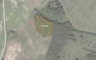 Miškų ūkio paskirties žemės sklypo pardavimo aukcionas Anykščių r. sav., Viešintų sen., Skudų k. (kadastro Nr. 3452/0001:59)