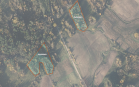 Miškų ūkio paskirties žemės sklypo pardavimo aukcionas Utenos r. sav., Leliūnų sen., Pagrandos k. (kadastro Nr. 8201/0009:284)