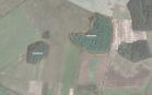 Miškų ūkio paskirties žemės sklypo pardavimo aukcionas Širvintų r. sav., Gelvonų sen., Maželių k. (kadastro Nr. 8935/0002:349)