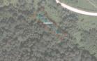 Miškų ūkio paskirties žemės sklypo pardavimo aukcionas Širvintų r. sav., Zibalų sen., Veiveros k. (kadastro Nr. 8902/0002:491)