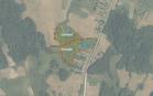 Miškų ūkio paskirties žemės sklypo pardavimo aukcionas Kelmės r. sav., Kražių sen., Pagių k. (kadastro Nr. 5458/0003:50)