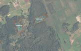 Miškų ūkio paskirties žemės sklypo pardavimo aukcionas Širvintų r. sav., Alionių sen., Magūnų k. (kadastro Nr. 8922/0003:267)