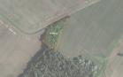 Miškų ūkio paskirties žemės sklypo pardavimo aukcionas Pakruojo r. sav., Pašvitinio sen., Gedminių k. (kadastro Nr. 6548/0004:77)