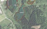 Miškų ūkio paskirties žemės sklypo pardavimo aukcionas Švenčionių r. sav., Švenčionių sen., Jančiūnų k. (kadastro Nr. 8657/0001:26)
