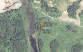 Miškų ūkio paskirties žemės sklypo pardavimo aukcionas Švenčionių r. sav., Švenčionių sen., Jaciūnų k. (kadastro Nr. 8657/0001:49)
