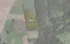 Miškų ūkio paskirties žemės sklypo pardavimo aukcionas Širvintų r. sav., Gelvonų sen., Kangedų k. (kadastro Nr. 8903/0002:271)