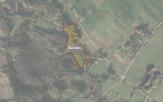 Miškų ūkio paskirties žemės sklypo pardavimo aukcionas Utenos r. sav., Leliūnų sen., Sabelkų k. (kadastro Nr. 8234/0002:243)
