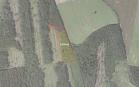 Miškų ūkio paskirties žemės sklypo pardavimo aukcionas Anykščių r. sav., Troškūnų sen., Smėlynės k. (kadastro Nr. 3418/0001:7)