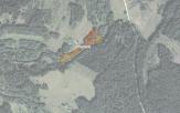 Miškų ūkio paskirties žemės sklypo pardavimo aukcionas Utenos r. sav., Vyžuonų sen., Vyžuonų vs. (kadastro Nr. 8280/0003:423)