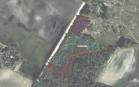 Miškų ūkio paskirties žemės sklypo pardavimo aukcionas Kazlų Rūdos sav., Jankų sen., Beržupių k. (kadastro Nr. 8415/0002:289)