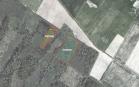 Miškų ūkio paskirties žemės sklypo pardavimo aukcionas Jurbarko r. sav., Raudonės sen., Birbilų k. (kadastro Nr. 9454/0002:3)