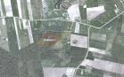 Miškų ūkio paskirties žemės sklypo pardavimo aukcionas Jurbarko r. sav., Juodaičių sen., Mišiūnų k. (kadastro Nr. 9417/0003:144)