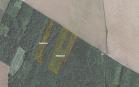 Miškų ūkio paskirties žemės sklypo pardavimo aukcionas Pasvalio r. sav., Krinčino sen., Skietelių k. (kadastro Nr. 6725/0008:130)