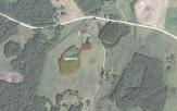 Miškų ūkio paskirties žemės sklypo pardavimo aukcionas Utenos r. sav., Tauragnų sen., Ruzgiškių k. (kadastro Nr. 8227/0002:136)
