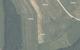 Kitos paskirties žemės sklypo nuomos aukcionas Lazdijų r. sav., Jukneliškės k., Dvaro g. 17 (kadastro Nr. 5903/0001:390)
