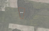 Miškų ūkio paskirties žemės sklypo pardavimo aukcionas Vilkaviškio r. sav., Gražiškių sen., Jakiškių k. (kadastro Nr. 3928/0005:11)