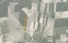 Miškų ūkio paskirties žemės sklypo pardavimo aukcionas Kelmės r. sav., Tytuvėnų apylinkių sen., Kubilių k. (kadastro Nr. 5448/0001:14)