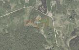 Miškų ūkio paskirties žemės sklypo pardavimo aukcionas Kelmės r. sav., Kražių sen., Klibalių k. (kadastro Nr. 5454/0002:49)