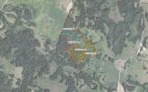 Miškų ūkio paskirties žemės sklypo pardavimo aukcionas Utenos r. sav., Tauragnų sen., Vidžiūnų k. (kadastro Nr. 8227/0002:137)