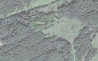 Miškų ūkio paskirties žemės sklypo pardavimo aukcionas Utenos r. sav., Užpalių sen., Kėpių k. (kadastro Nr. 8220/0002:215)
