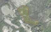 Miškų ūkio paskirties žemės sklypo pardavimo aukcionas Kelmės r. sav., Liolių sen., Gaurylių k. (kadastro Nr. 5436/0001:36)