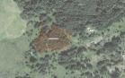 Miškų ūkio paskirties žemės sklypo pardavimo aukcionas Rokiškio r. sav., Kamajų sen., Baušiškių k. (kadastro Nr. 7310/0002:176)