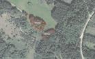 Miškų ūkio paskirties žemės sklypo pardavimo aukcionas Utenos r. sav., Užpalių sen., Kaimynų k. (kadastro Nr. 8220/0001:383)