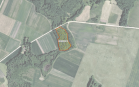 Miškų ūkio paskirties žemės sklypo pardavimo aukcionas Pasvalio r. sav., Daujėnų sen., Orijos vs. (kadastro Nr. 6703/0002:10)