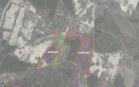 Miškų ūkio paskirties žemės sklypo pardavimo aukcionas Plungės r. sav., Kulių sen., Mižuikų k. (kadastro Nr. 6837/0006:233)
