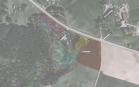 Miškų ūkio paskirties žemės sklypo pardavimo aukcionas Kelmės r. sav., Užvenčio sen., Šlumpių k. (kadastro Nr. 5418/0003:67)
