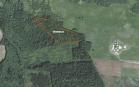 Miškų ūkio paskirties žemės sklypo pardavimo aukcionas Pakruojo r. sav., Linkuvos sen., Gaižūnų k. (kadastro Nr. 6515/0003:143)