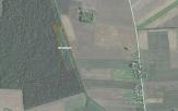 Miškų ūkio paskirties žemės sklypo pardavimo aukcionas Pakruojo r. sav., Klovainių sen., Balsių k. (kadastro Nr. 6501/0006:312)