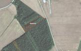 Miškų ūkio paskirties žemės sklypo pardavimo aukcionas Pakruojo r. sav., Linkuvos sen., Tričių k. (kadastro Nr. 6583/0002:204)