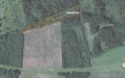 Miškų ūkio paskirties žemės sklypo pardavimo aukcionas Biržų r. sav., Pačeriaukštės sen., Griniūnų k. (kadastro Nr. 3653/0001:112)