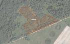 Miškų ūkio paskirties žemės sklypo pardavimo aukcionas Rokiškio r. sav., Juodupės sen., Vanagynės k. (kadastro Nr. 7355/0004:50)